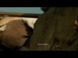 Остров сокровищ (фильм, 2012)